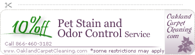 odor and pet stain removal