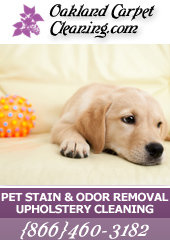 Oakland Pet Stains & Odor Cleaning